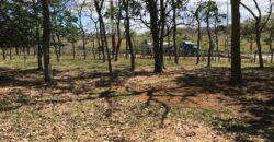 Terreno de 40,000 m2 en Coyol