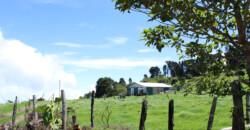 Terreno en venta de 1875.33 m2 en Zarcero